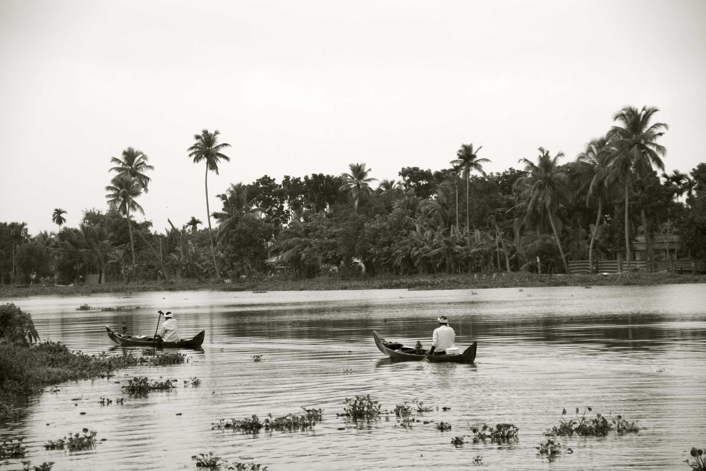 Early morning in the Kerala Backwaters