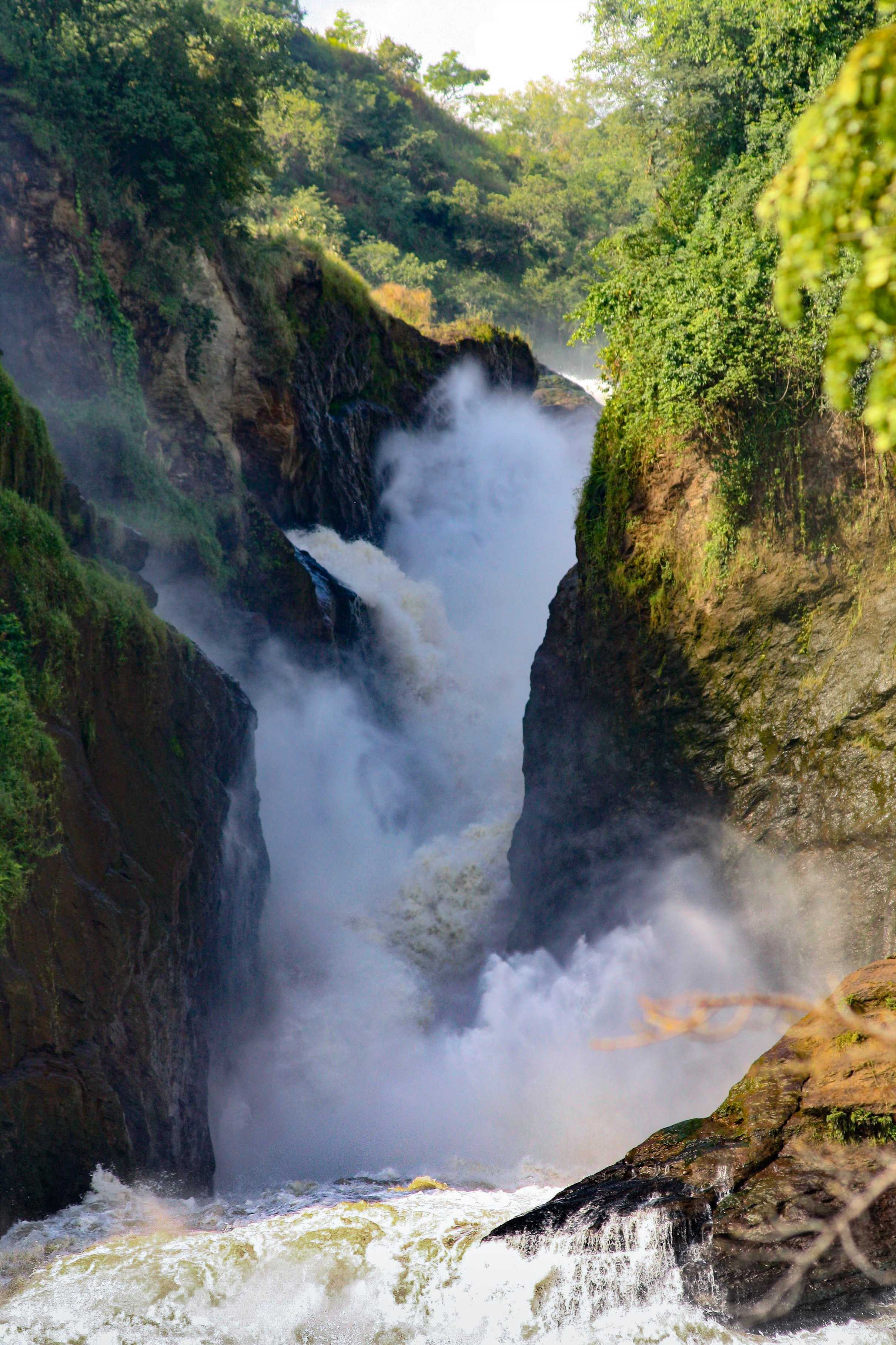Below the gorge: Murchison Falls